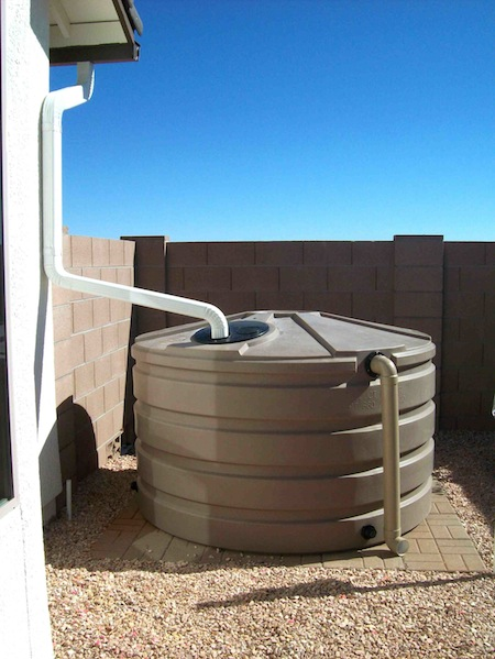 Leaf Network Linking Edible Arizona Forests Rainwater Tanks
